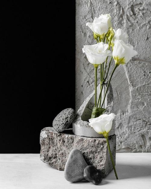 Lentebloemen met een keus aan rotsen Gratis Foto