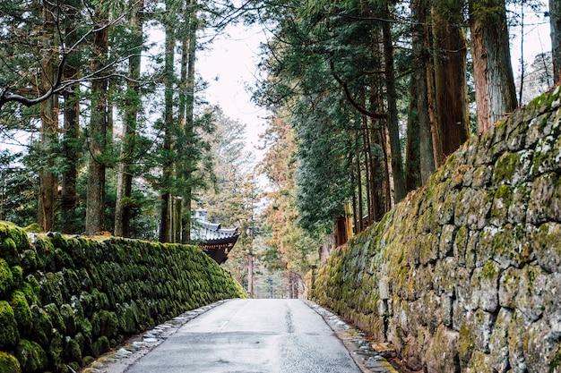 Loopbrug naar de tempel van japan Gratis Foto