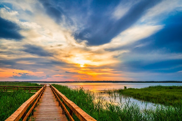 Looppad in het meer. boardwalk, houten brug voor natuurpad. Premium Foto