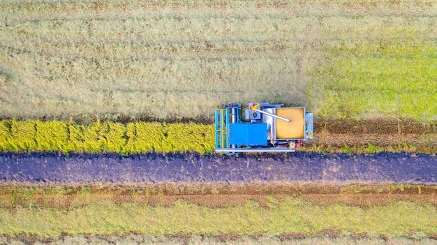 Lucht hoogste mening van maaimachinemachine die in padieveld van hierboven werken Premium Foto