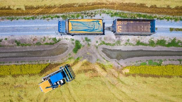 Lucht hoogste mening van maaimachinemachine en vrachtwagen die in padieveld werken Premium Foto