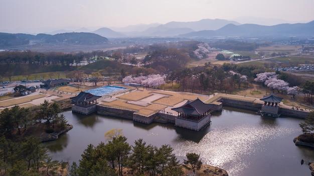 Luchtfoto in cherry fastival in zuid-korea Premium Foto