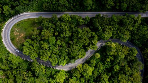 Luchtfoto uitzicht over tropische boom bos met een weg door met auto, forest road. Premium Foto