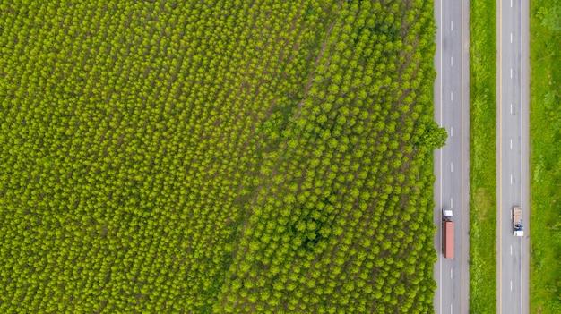 Luchtfoto van auto's en vrachtwagens op asfaltweg loopt door het groene bos Premium Foto