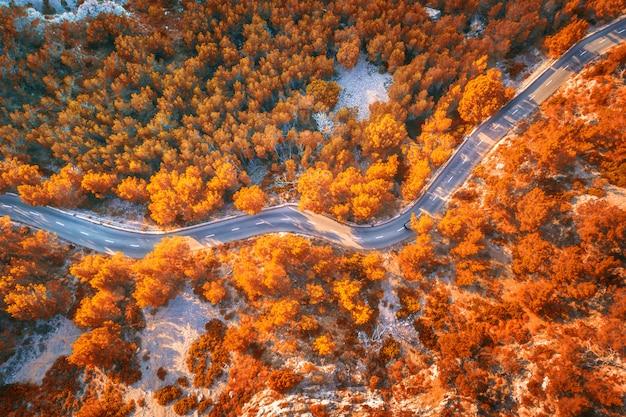 Luchtfoto van berg kromme weg met auto's, oranje bos bij zonsondergang in de herfst Premium Foto