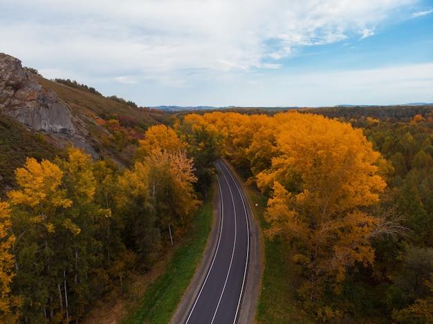 Luchtfoto van de weg in de prachtige herfst altai bos Premium Foto