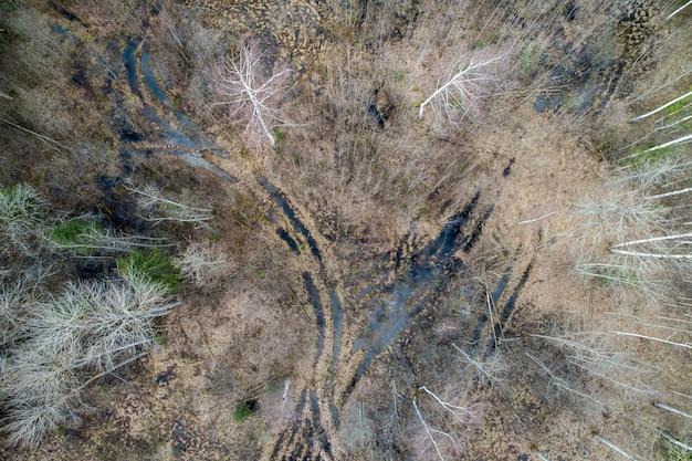 Luchtfoto van een dicht bos met kale herfst bomen en gevallen bladeren op een grond Gratis Foto