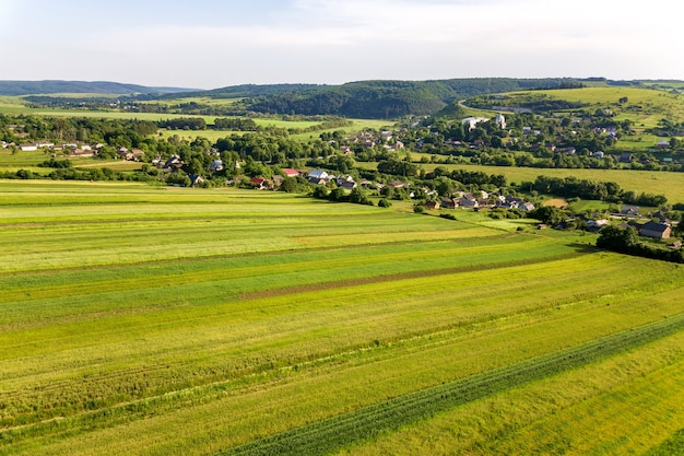 Luchtfoto van een klein dorp winnen veel huizen en groene landbouwvelden in het voorjaar met verse vegetatie na zaaiseizoen op een warme zonnige dag. Premium Foto