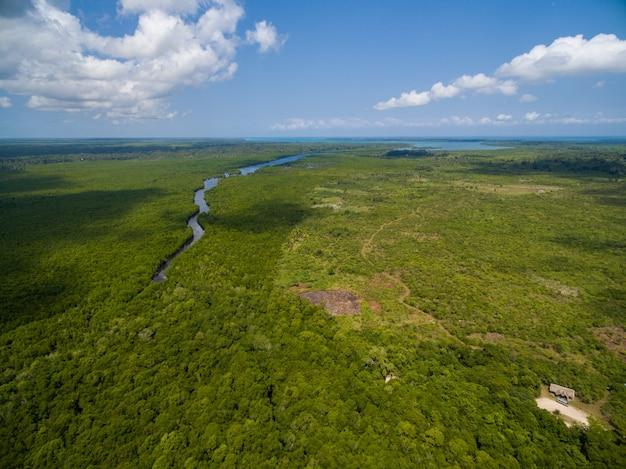 Luchtfoto van een rivier die door een tropisch groen veld gaat dat in zanzibar, afrika is gevangen Gratis Foto