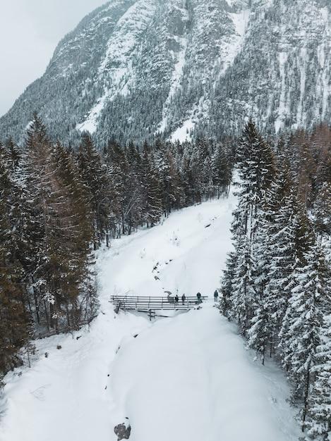 Luchtfoto van een weg omringd door pijnbomen en een deel van een grote berg in de winter Gratis Foto