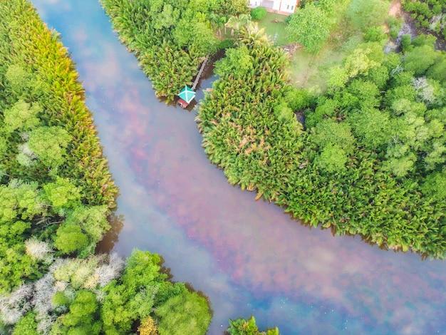 Luchtfoto van groene bossen en bergen. Premium Foto