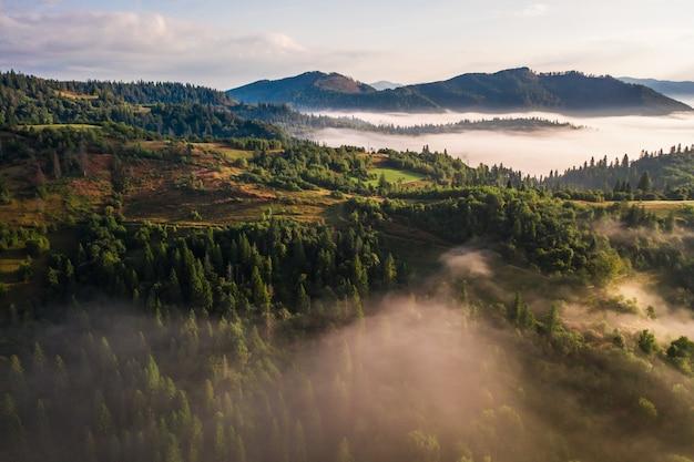 Luchtfoto van kleurrijke gemengd bos gehuld in ochtendmist op een mooie herfstdag Gratis Foto