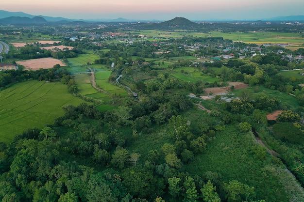 Luchtfoto van landbouwgrond / rijst veld in thailand Premium Foto