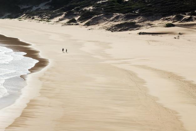 Luchtfoto van twee mensen wandelen in het prachtige strand aan zee Gratis Foto