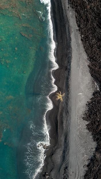 Luchtfoto verticale schot van de kustlijn van de zee met verbazingwekkende golven en een palmboom Gratis Foto