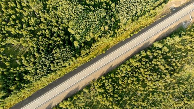Luchtfoto vogelperspectief over een lege landweg tussen groene bossen Premium Foto
