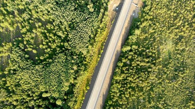 Luchtfoto vogelperspectief uitzicht over een lege landweg zonder auto tussen groen bos op zonnige dag. Premium Foto