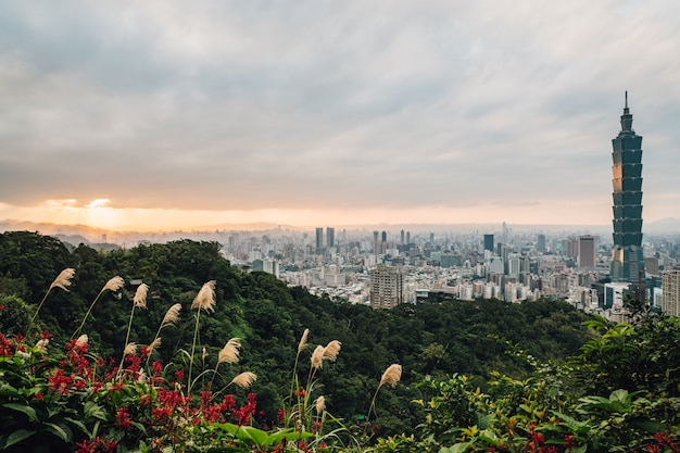 Luchtpanorama over taipeh van de binnenstad met taipeh 101 wolkenkrabber met bomen op de berg en grasbloemen Premium Foto