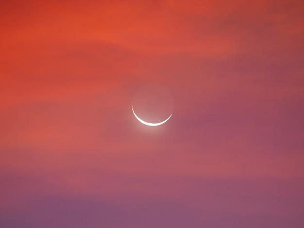 Maan halve maan in de vroege ochtend. Premium Foto