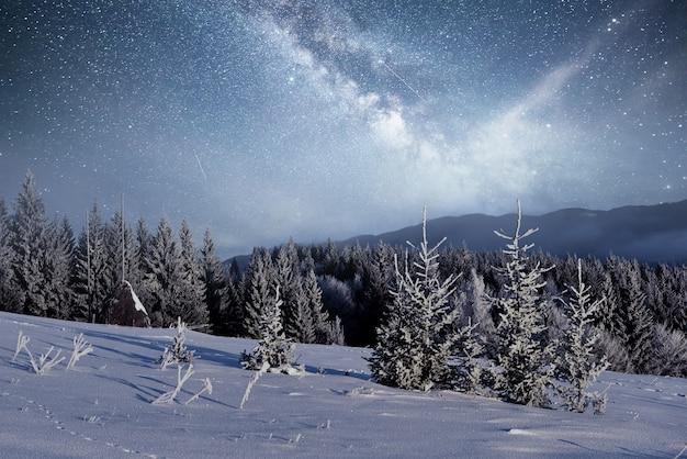 Magische winter besneeuwde boom. winterlandschap. levendige nachtelijke hemel met sterren en nevel en galaxy. diepe lucht astrofoto Gratis Foto