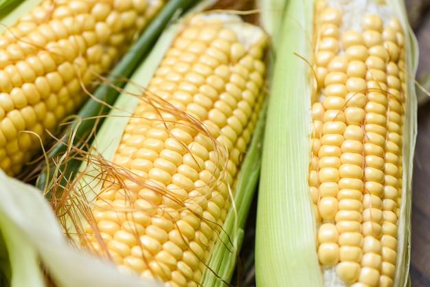 Maïskolven en suikermaïsoren Premium Foto