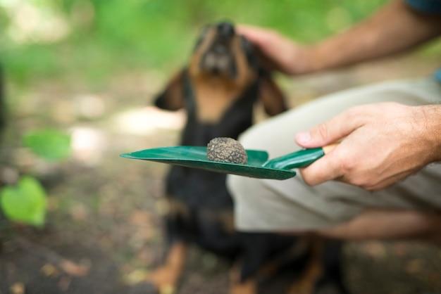Man bedankt zijn getrainde hond voor zijn hulp bij het vinden van truffelpaddestoelen in het bos Gratis Foto