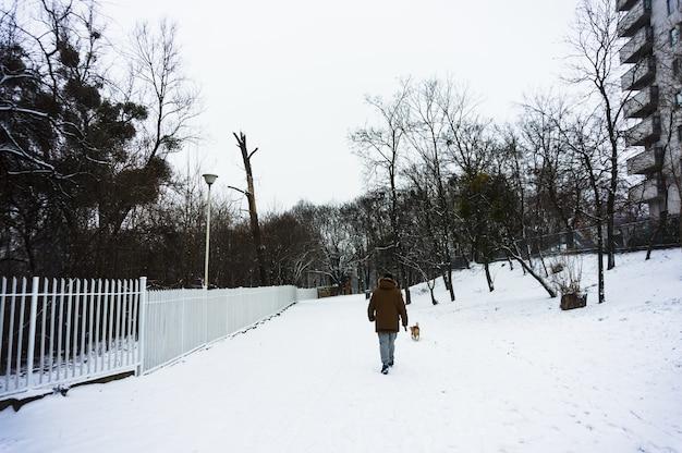 Man lopen zijn hond op besneeuwde grond tijdens de winter Gratis Foto
