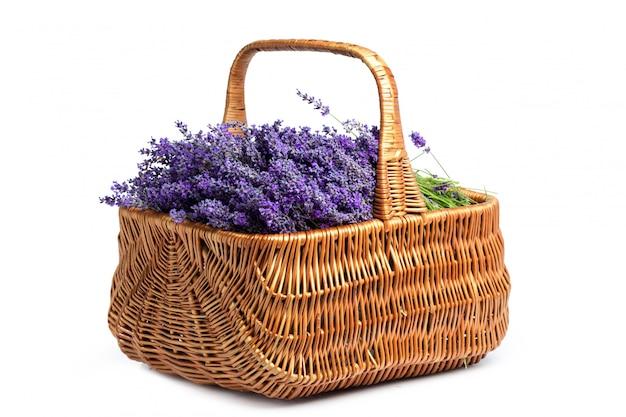 Mand met een lavendel, geïsoleerd op een witte achtergrond Premium Foto
