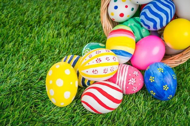 Mandje van de paashaas eieren op vers groen gras Gratis Foto