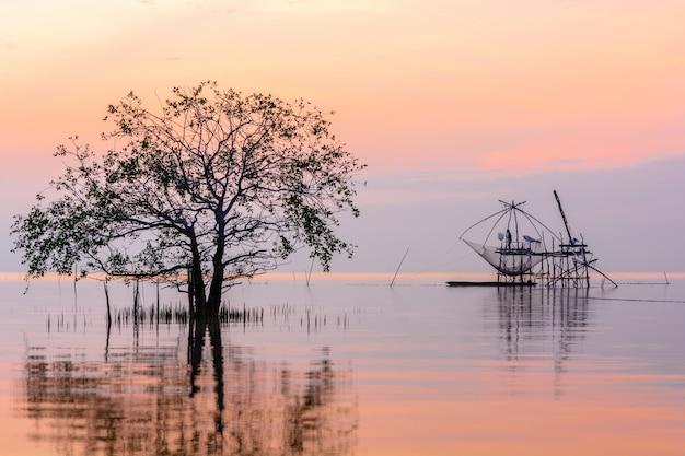 Mangrovebomen in meer met vierkante onderdompeling netto op zonsopgang bij pakpra-dorp, phatthalung, thailand Premium Foto