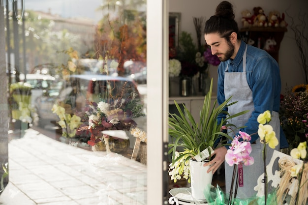 Mannelijke bloemist die de bloempot in zijn winkel schikken Gratis Foto