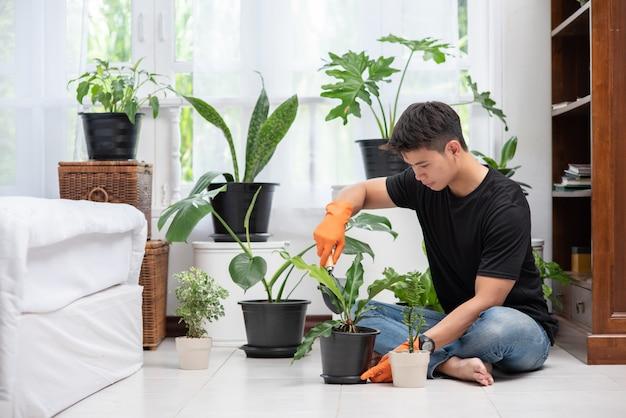 Mannen die oranje handschoenen dragen en bomen binnenshuis planten. Gratis Foto