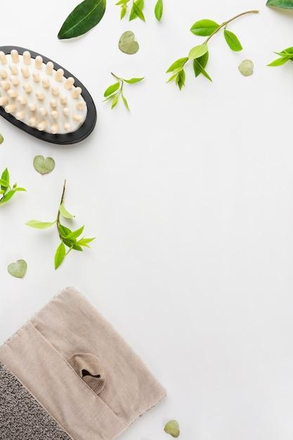 Massageborstel; verlaat; en luffa op witte achtergrond Gratis Foto