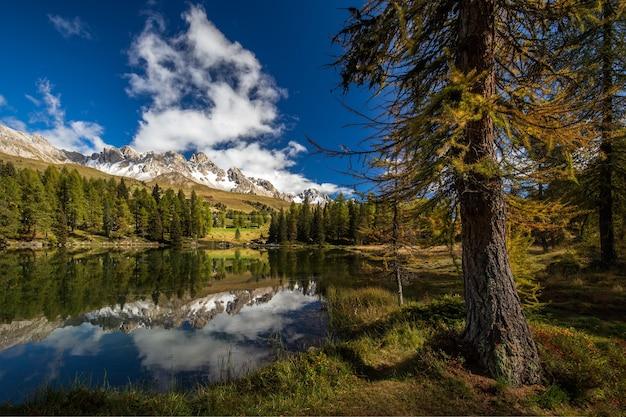 Meer omgeven door rotsen bedekt met sneeuw en het bos met bomen die reflecteren op het water Gratis Foto
