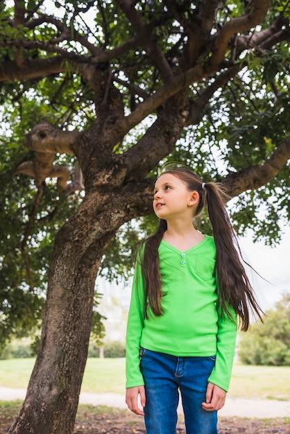 Meisje dat groene t-shirt draagt die zich onder grote boom bevindt Gratis Foto