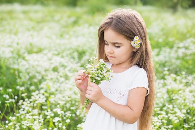 Meisje dat met lang haar witte bloemen bekijkt die door haar op gebied worden verzameld Gratis Foto