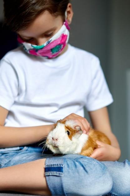 Meisje in masker het spelen met rood proefkonijn, cavy thuis bij bank terwijl in quarantaine. Premium Foto