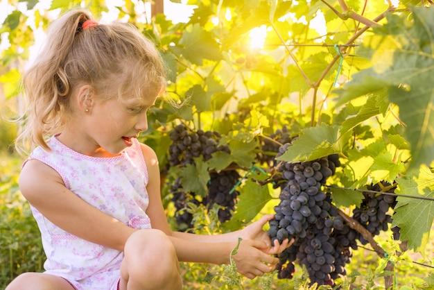 Meisje met tros druiven, zonsondergang achtergrond Premium Foto