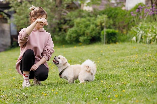 Meisje speelt met een hond een tibetaanse spaniel op een groen gazon Premium Foto