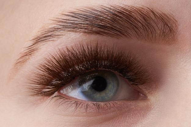 Meisjesoog met lichtblauwe iris en bruine wenkbrauw Premium Foto