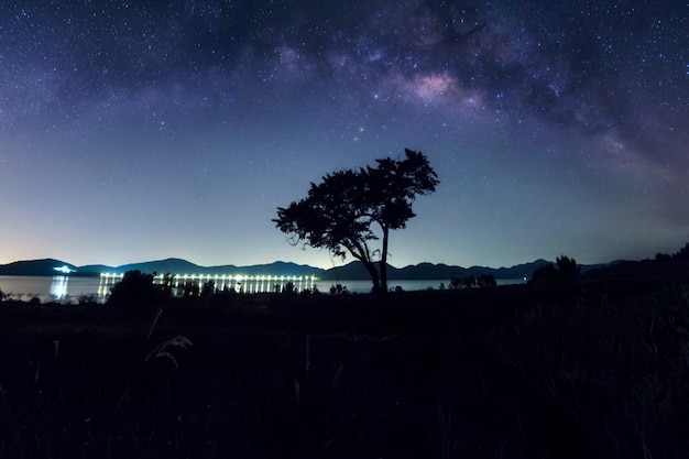 Melkwegstelsel boven de boom. Premium Foto