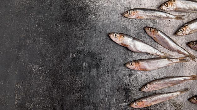 Menigte van tonijn kopie ruimte Gratis Foto