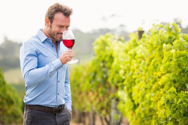 Mens die rode wijn ruikt Premium Foto