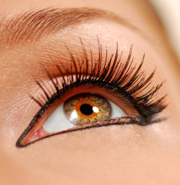 Menselijk vrouwelijk oog. valse wimpers. voering. Gratis Foto