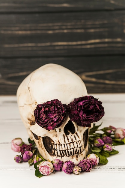 Menselijke schedel met rozen in oogkassen Gratis Foto