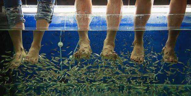 Mensen die fish spa massage dicht omhoog doen bij benen Gratis Foto