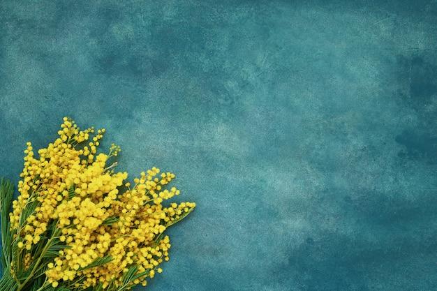 Mimosa bloemen boeket op groene achtergrond. ruimte kopiëren, bovenaanzicht. Premium Foto