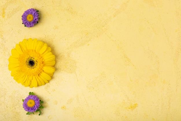 Minimalistisch bloemenconcept met exemplaarruimte Gratis Foto