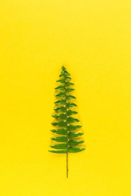 Minimalistische kerstboom op gele pastel trendy achtergrond Premium Foto