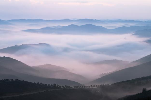 Mistige heuvels in de ochtend Premium Foto